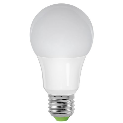 Ampoule LED Foxlight E27